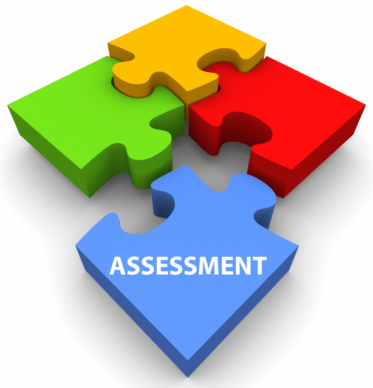 Puzzle-Assessment.jpg